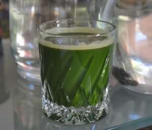 Chlorophyllsaft